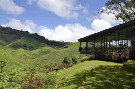 J.A. Balcony - BOH Estate - Cameron Highlands