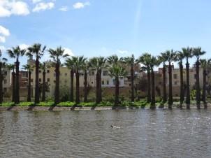 Lake Jardin Jnan Sbil