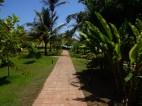 Caminhos no jardim da Beijupirá. - Foto: Maitê Prado