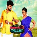 Namma-Veettu-Pillai-2019-Tamil-Movie