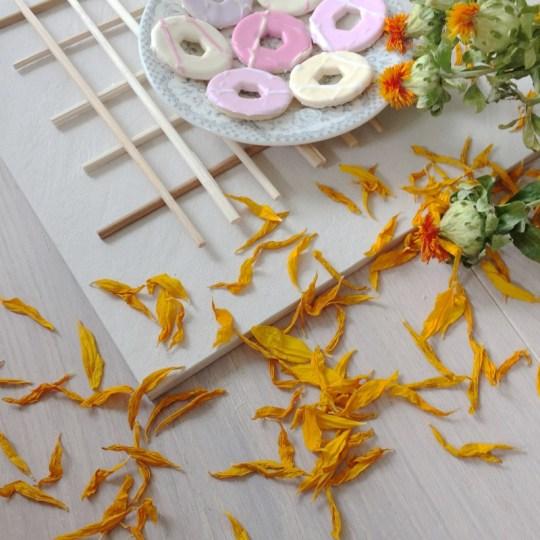women in business, zen zhou- majeang.com