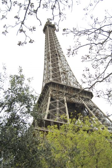 travel review of 2016- Eiffel tower