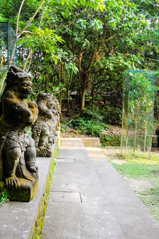 My best ever holiday- monkey forest, Bali