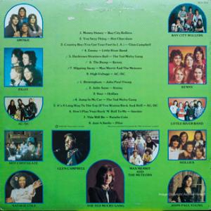 EMI - Bumper - SCA004 - Back cover