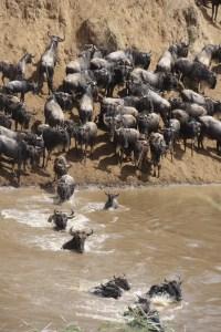 tourist destinations in Kenya