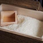 米びつがカビの温床に?お米は冷蔵庫保管がカビ防止の新常識!