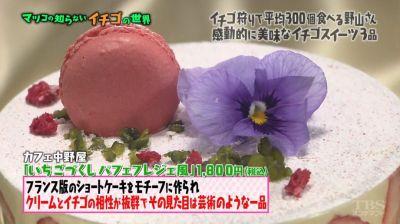matuko-ichigo39