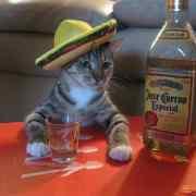 L'effet tequila, c'est quoi ?