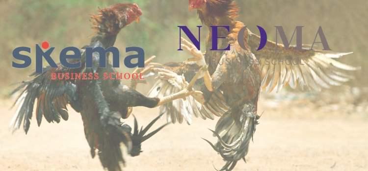NEOMA VS SKEMA : le sondage