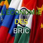 L'économie des BRIC (Andrea Goldstein et Françoise Lemoine) : Fiche de lecture