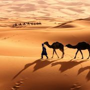 Le Sahara : périphérie ou coeur africain ?