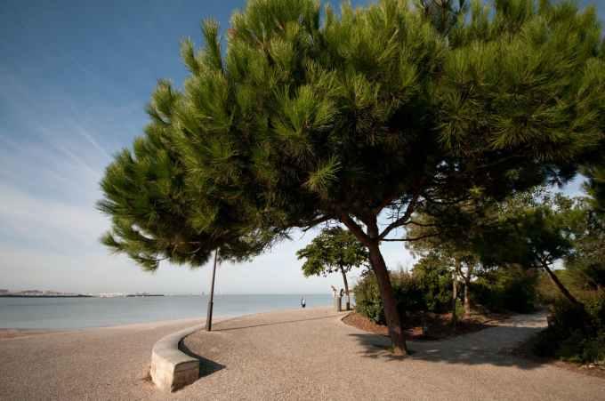 Dans le top 20 des stations balnéaires françaises, combien La Rochelle compte-t-elle de plages ?