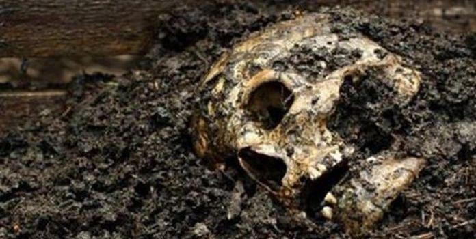 CG  2018 – Le corps dans tous ses états : entre laideur, décomposition et vieillesse !