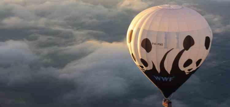 Podcast #18 – Le WWF et les partenariats entreprises – Benjamin de Poncheville