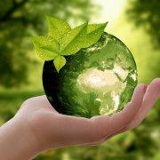 Ne pas perdre la main – Revoir son vocabulaire allemand sur l'environnement