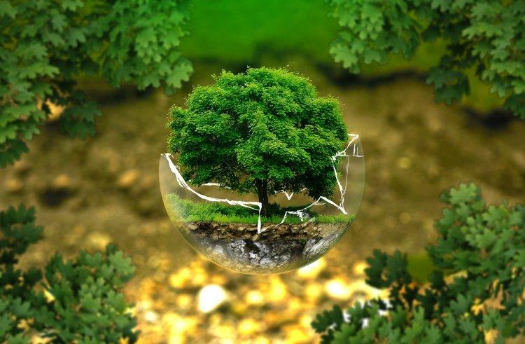 L'environnement et le développement durable, nouveaux acteurs à la voix internationale ?