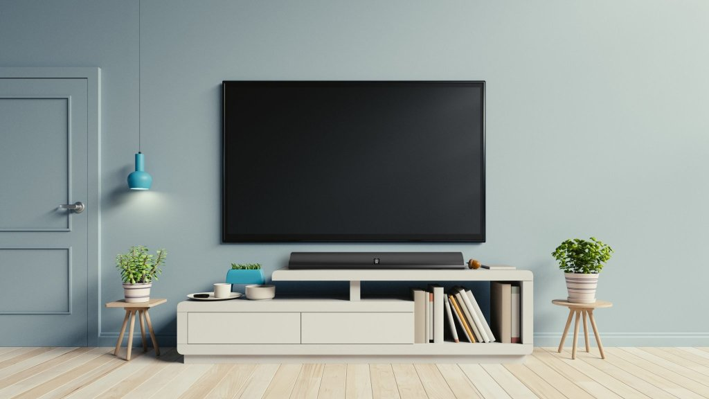 TV on the cabinet in modern living room have plants and book on