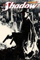 Shadow11-Cov-Bradstreet