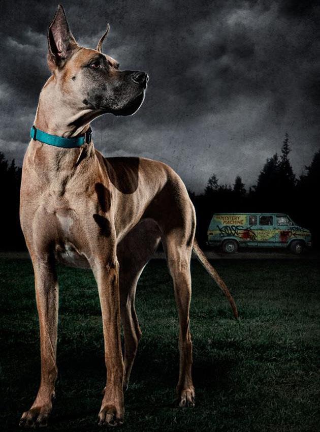 Scooby-Doo-VS-The-Zombie-Apocalypse-12