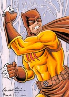 Spider-Man, Peter Parker, Green Lantern, The Flash, Batman, Superman, Peter David, Spectre, DC Comics