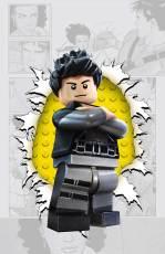 GRAY_Cv4_LEGO_var