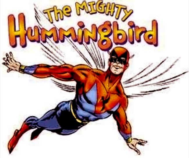 Hummingbird-II