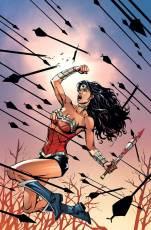 Wonder-Woman-#52-variant-cover-by-David-Finch-and-Matt-Banning