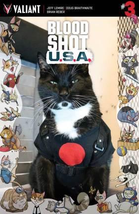 bsusa_003_cat-cosplay-variant