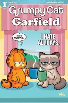 GrumpyGarfield-001-001_D_Fleecs