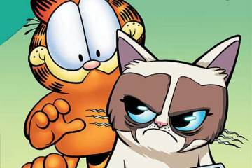 Grumpy Cat / Garfield #2
