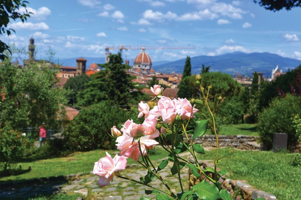 Flowers Best Things to do in Florence Italy