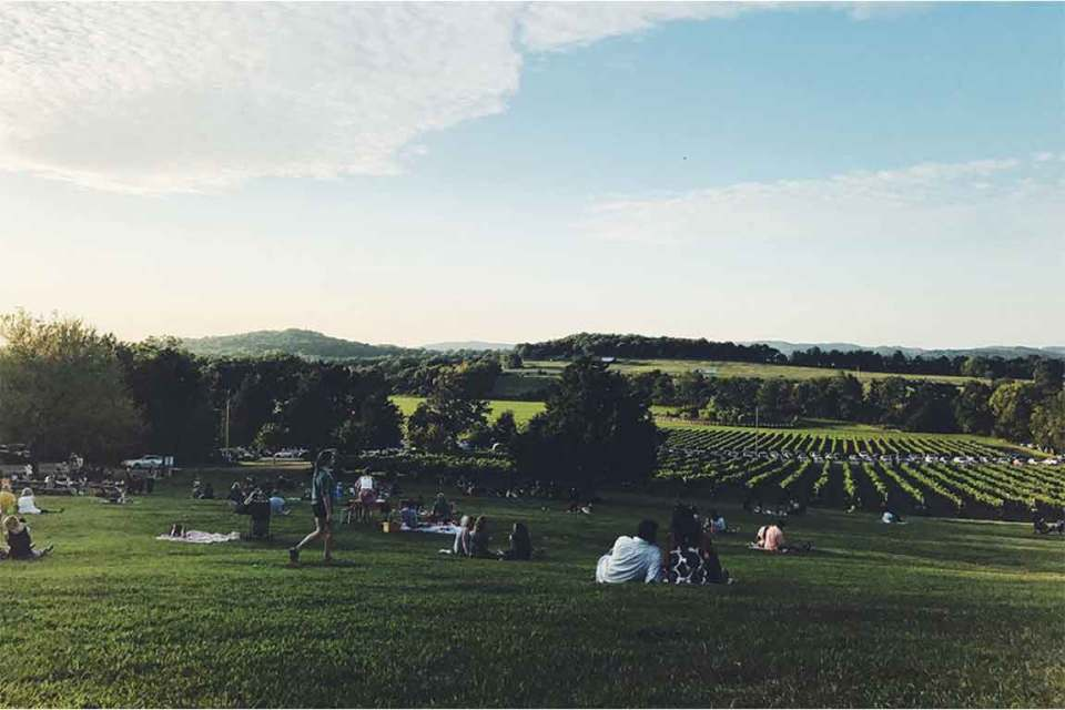 top things to do in nashville arrington vineyards