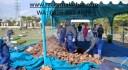 Pemakaman Jenazah Covid-19 di Al Azhar Hub 08568534029
