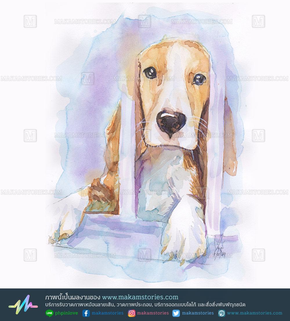 วาดภาพสัตว์เลี้ยง วาดภาพสุนัขสีน้ำ Watercolor Painting