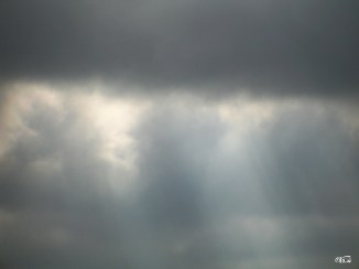 rays_of_hope_02