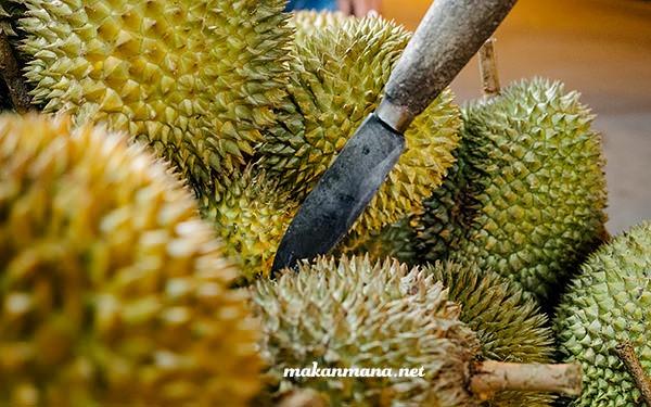 Durian Medan Juntak Margana 1