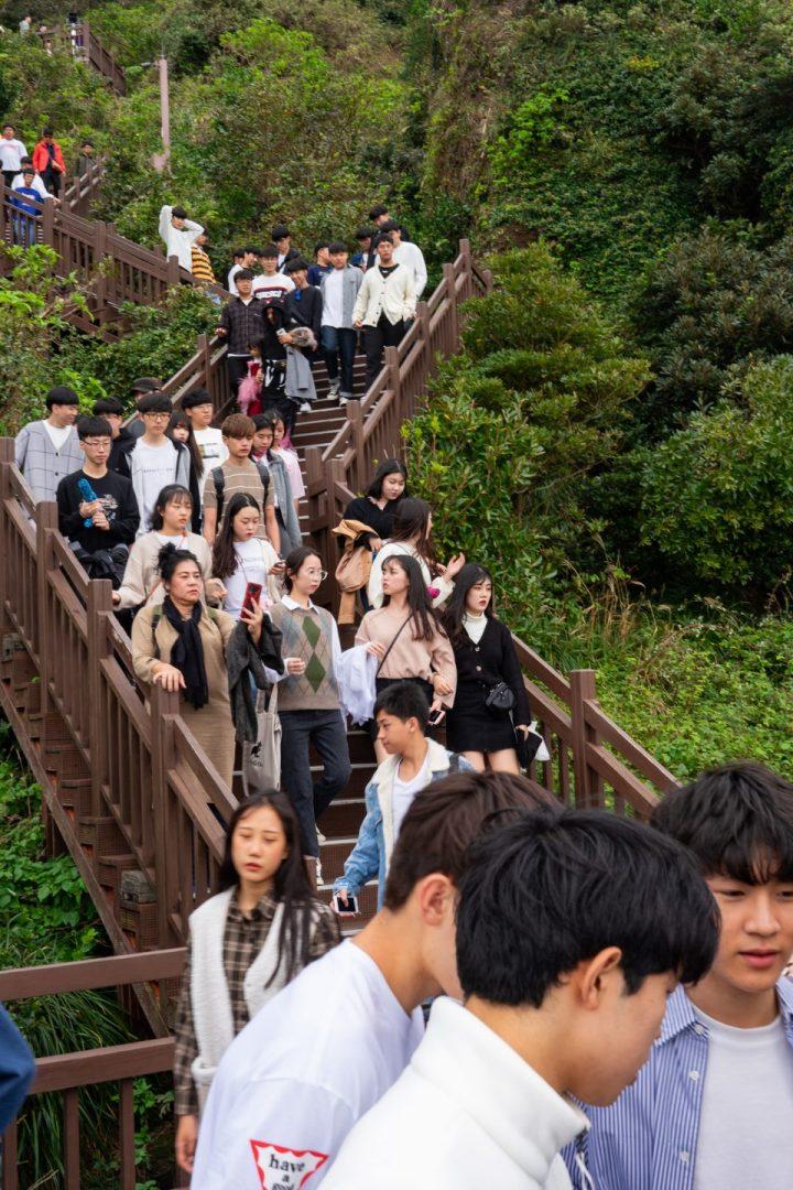 Makan Gurita Hidup-Hidup—Makanmana South Korea Trip Part I 33