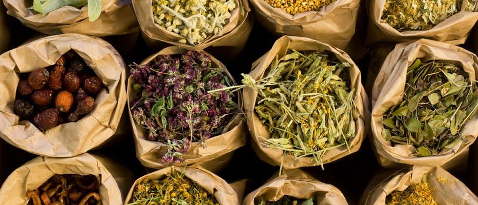 insulin resistance herbal medicine