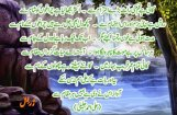 533075_112776862189403_1893247836_n