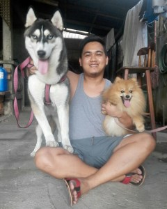 Brida and Zaije: Siberian husky and Pomeranian