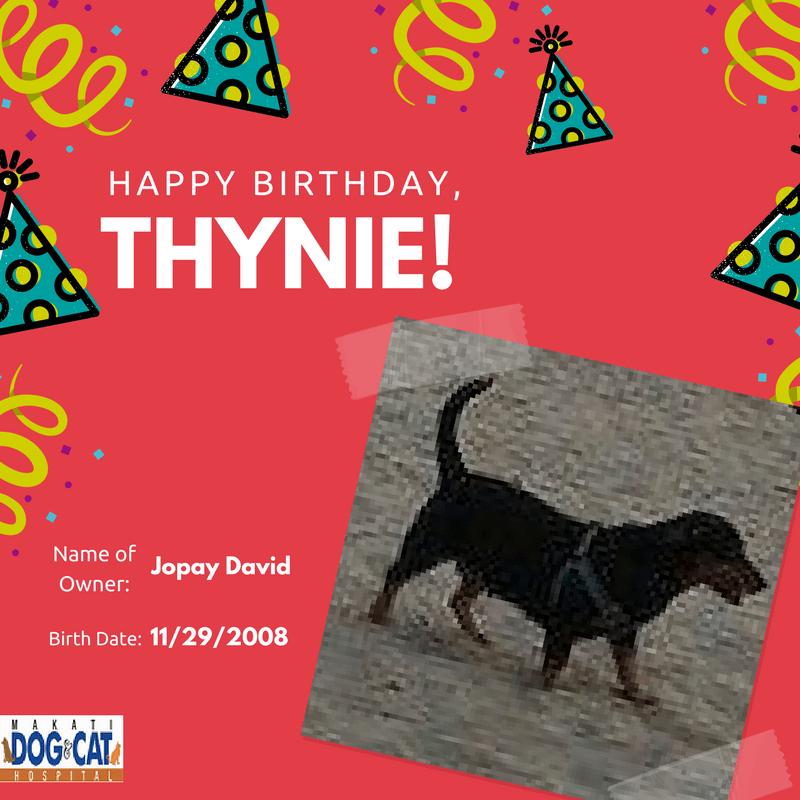 Happy Birthday, Thynie!