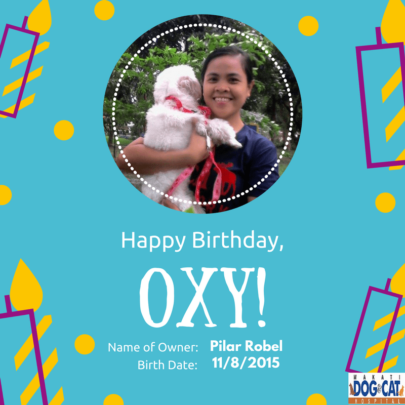 Happy Birthday, Oxy!