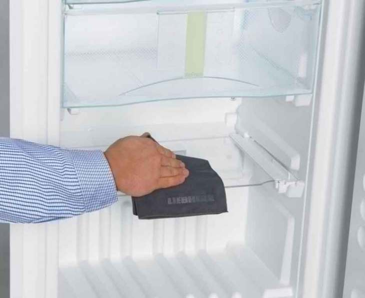 Плесень в холодильнике: почему появляется и чем обработать