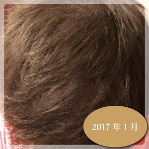 aga-201701-01-01