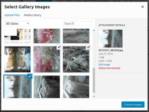 Selecting multiple images in Media Library