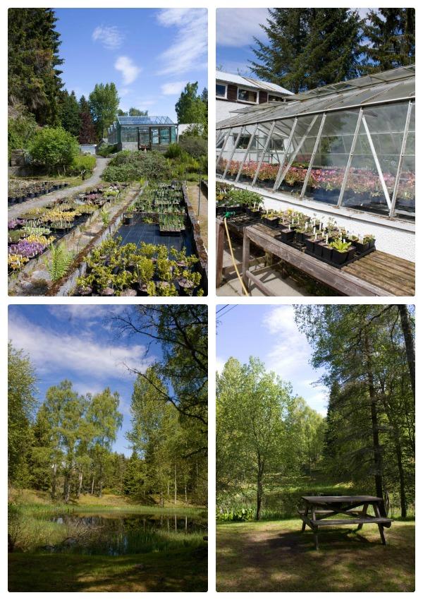 Inshriach Gardens and Tearoom
