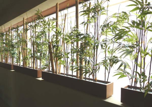 Featured Residential Silk Interior Plantscape Design