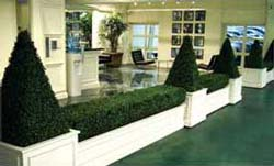 beautifully sculpted silk boxwood topiaries and hedge work - Platinum Equity elevator lobby Beverly Hills