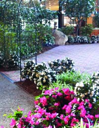 complex silk plantscape project including walkways, terraced planters and large silk specimen trees - Holiday Inn, Boxborough, MA