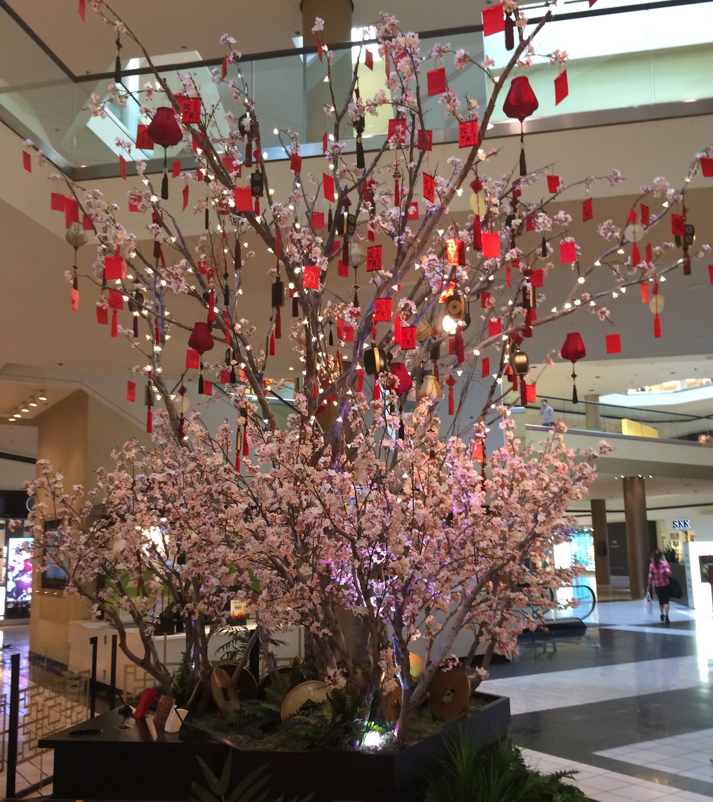 Cherry Blossom Trees For A Happy New Year Make Be Leaves